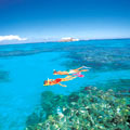 "Snorkelling on the Great Barrier Reef at ""Fantasea Reefworld"" pontoon"
